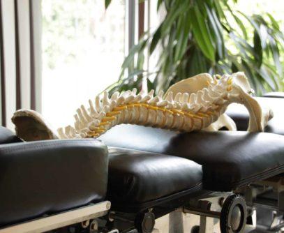 voorschrift nodig voor chiropraxie
